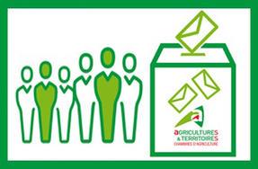 Lection des membres de la chambre d 39 agriculture du nord pas de calais actualit s actualit s - Chambre d agriculture pas de calais ...